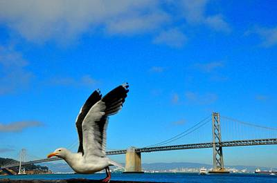 Photograph - San Francisco Bay Bridge by Andrew Dinh