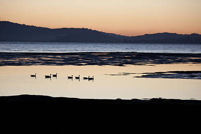 Photograph - San Francisco Bay by Suzanne Gaff