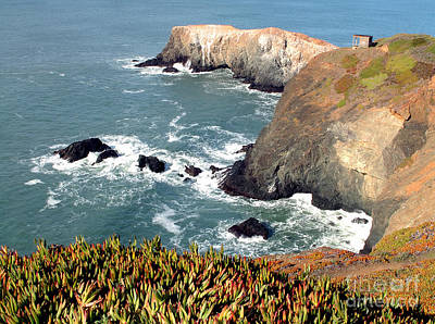 Sausalito Photograph - Marin Headlands Bunker by Norman Andrus