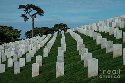 Photograph -   San Francisco National Cemetery 2 by Glenn Franco Simmons