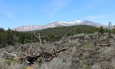 Photograph - San Francisco Peaks At Sunset Crater Volcano National Monument - 5 by Christy Pooschke