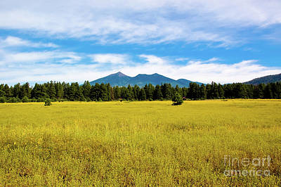Photograph - San Francisco Peaks Flagstaff by Kelly Wade