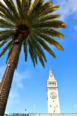 Photograph - San Francisco Seaport Palm Tree by Andrew Dinh