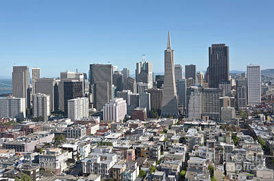 San Francisco Skyline And Residential Area. Original by Gino Rigucci