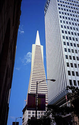 Photograph - San Francisco - Transamerica Pyramid Building by Frank Romeo
