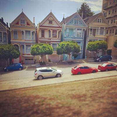 California Wall Art - Photograph - Painted Ladies by Nancy Ingersoll