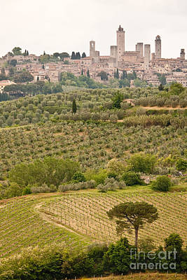 Photograph - San Gimignano II by Colette Panaioti