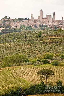 San Gimignano II Art Print