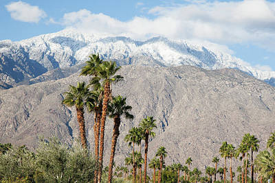 Photograph - San Jacinto Mountains by John Noel