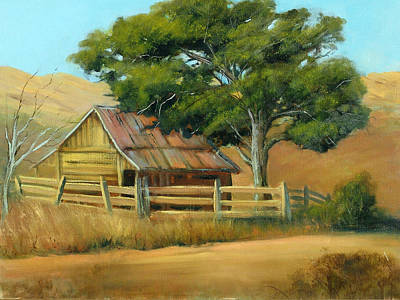 San Joaquin Barn Art Print by Sally Seago