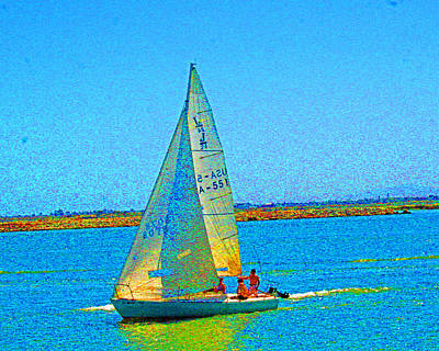 Photograph - San Joaquin Sails by Joseph Coulombe