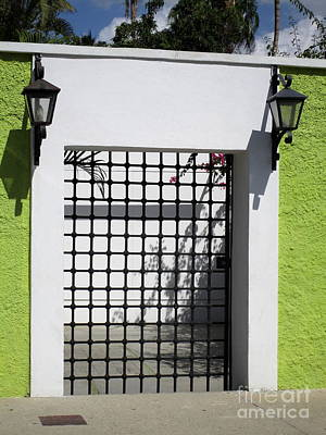 Photograph - San Jose Del Cabo Door 10 by Randall Weidner