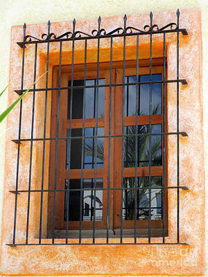 Photograph - San Jose Del Cabo Window 2 by Randall Weidner