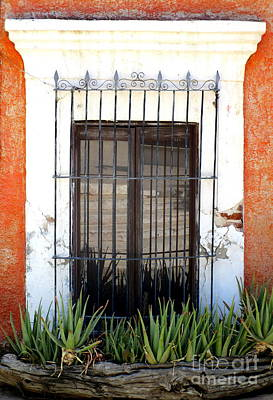 Photograph - San Jose Del Cabo Window 4 by Randall Weidner