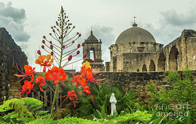 Priska Wettstein Pink Hues - Mission San Jose with Pride of Barbados by Michael Tidwell