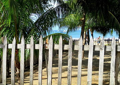 Photograph - San Juan Del Sur Fence 2 by Randall Weidner