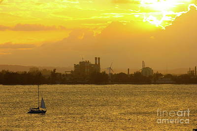 Photograph - San Juan Harbor Sunset by The Art of Alice Terrill