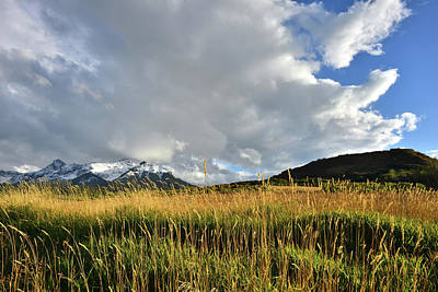 Photograph - San Juan Mountains From Last Dollar Road by Ray Mathis