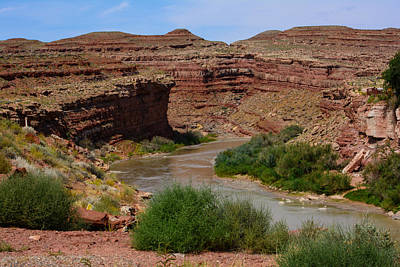 Photograph - San Juan River by Tikvah's Hope