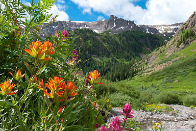 Photograph - San Juans Indian Paintbrush Landscape by Cascade Colors