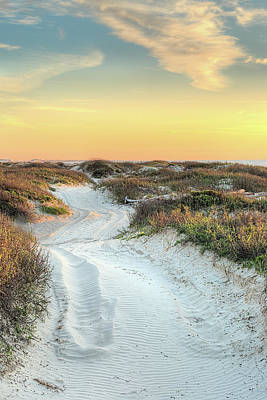 Photograph - San Luis Beach Road  by JC Findley