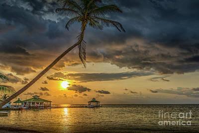 Photograph - San Pedro Belize C.a. by David Zanzinger