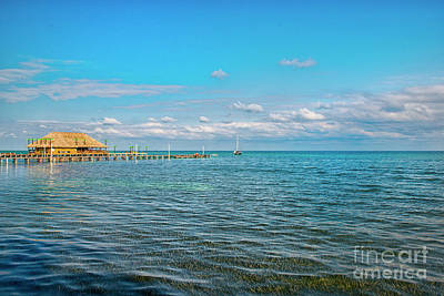 Photograph - San Pedro Belize Sea Grass by David Zanzinger
