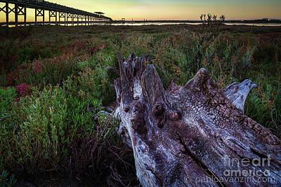 Photograph - San Pedro River Bridge Cadiz Spain by Pablo Avanzini