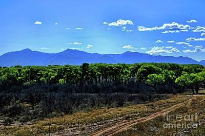 Photograph - San Pedro River Valley by Diana Mary Sharpton
