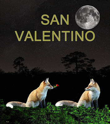 Mixed Media - san valentino Eftalou Foxes be my valentine by Eric Kempson