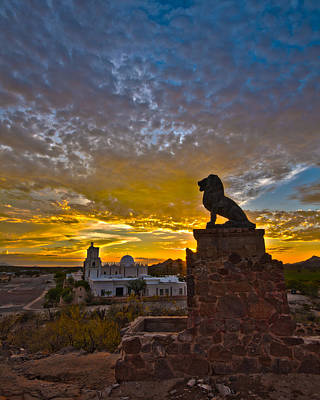 Photograph - San Xavier Guardian by Michael Yeager