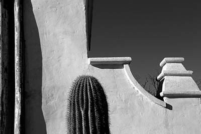 Photograph - San Xavier Wall Detail With Cactus Bw by Mary Bedy