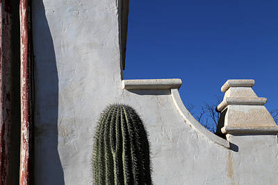 Photograph - San Xavier Wall Detail With Cactus by Mary Bedy