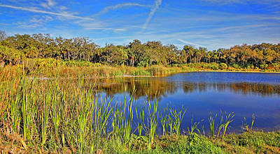 Photograph - Sanctuary 2 by HH Photography of Florida