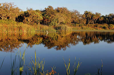 Photograph - Sanctuary by HH Photography of Florida