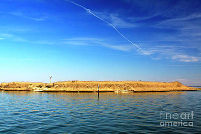 Photograph - Sanctuary On Long Beach Island by John Rizzuto