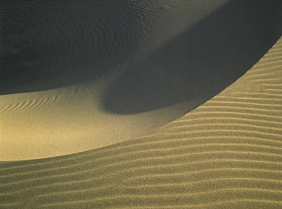 Photograph - Sand And Shadows by Robert Potts