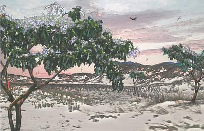 Sand And Trees Original