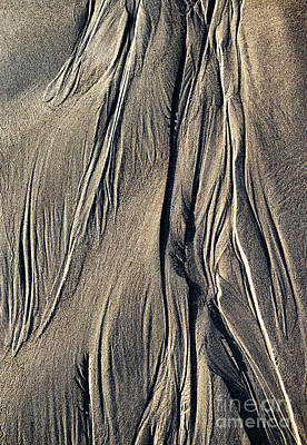 Wave Pattern Photograph - Sand Angel by Tim Gainey
