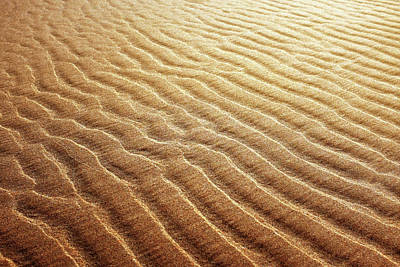 Photograph - Sand Background by Carlos Caetano