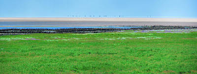 Photograph - Sand Bank Norderoogsand by Sun Travels