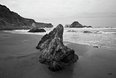 Photograph - Sand Dollar Beach I Bw by David Gordon