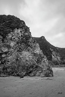 Photograph - Sand Dollar Beach IIi Bw by David Gordon
