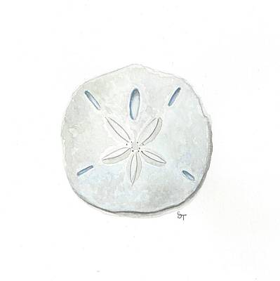 Painting - Sand Dollar by Stephanie Troxell