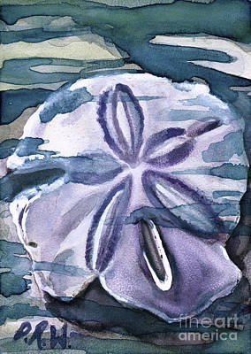 Painting - Sand Dollar Study by D Renee Wilson