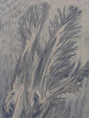 Sand Drawing 1 Art Print by Kevin Callahan