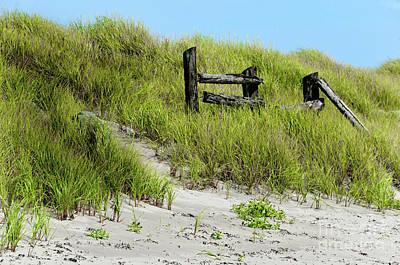 Photograph - Sand Dune Barrier by Elaine Manley