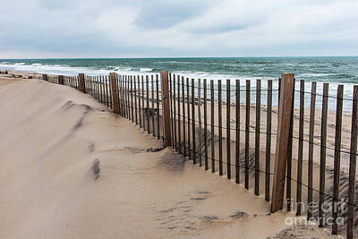 Photograph - Sand Dune Fence On Outer Banks by Dan Carmichael
