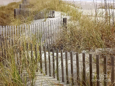 Sand Fences Mixed Media - Sand Dune Grasses by Clive Littin