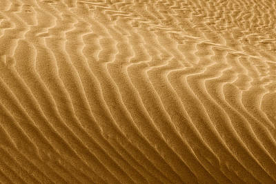 Playground Photograph - Sand Dune Mojave Desert California by Christine Till